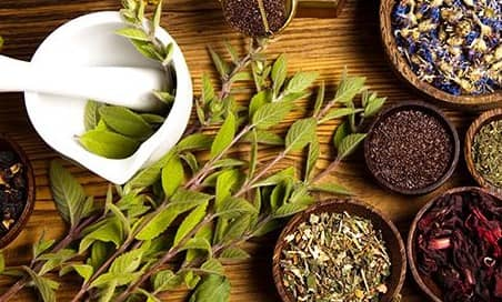 5 Principle of Naturopathy- History and How It Works